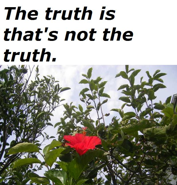 the-truth-is-thats-not-the-truth.jpg